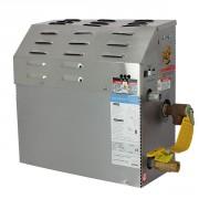 Générateur de vapeur MS-400E 9 kw Tri