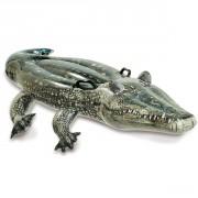 Alligator gonflable à chevaucher